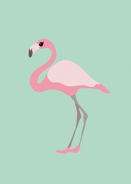 poster flamingo Studio Inktvis