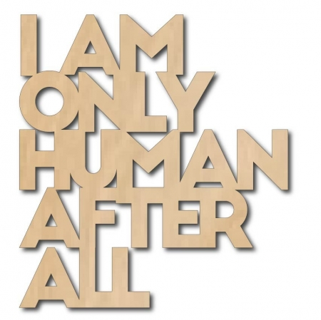 Muurdeco I AM ONLY HUMAN