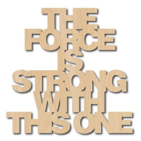 HOUTEN QUOTE THE FORCE IS STRONG WITH THIS ONE KLEIN