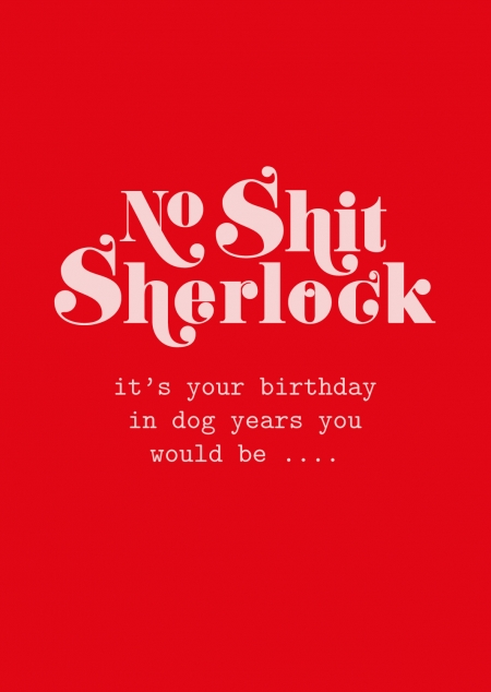 POSTKAART NO SHIT SHERLOCK BIRTHDAY DOG YEARS