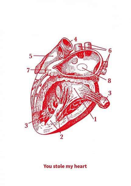 POSTKAART YOU STOLE MY HEART