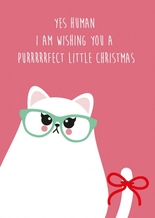POSTKAART PERFECT LITTLE CHRISTMAS GRUMPY CAT
