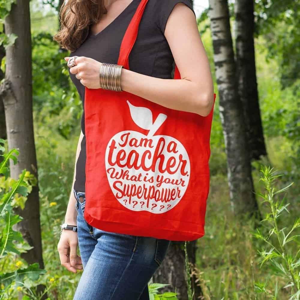 TEACHER TAS