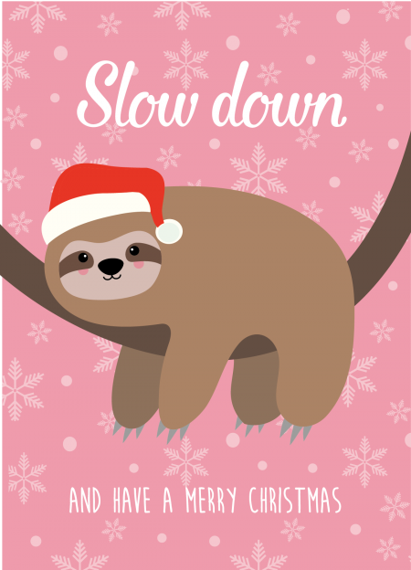 KERSTKAART SLOW DOWN LUIAARD